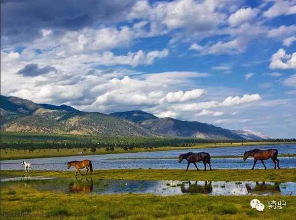 全球风景最美平原山水微信