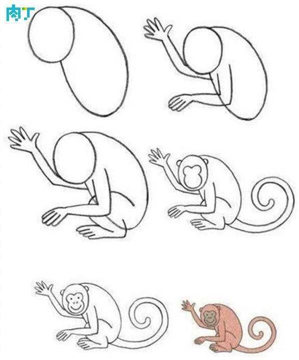 猴子怎么画最简单可爱