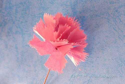 折纸花康乃馨 简单折纸康乃馨