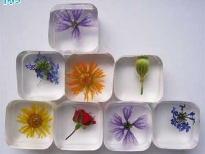 水晶胶模具 硅胶模具制作水晶滴胶手工花朵标本diy制作教程详解